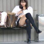むっちりした太ももが凶悪なエロさを醸し出すニーソ娘の街撮り画像